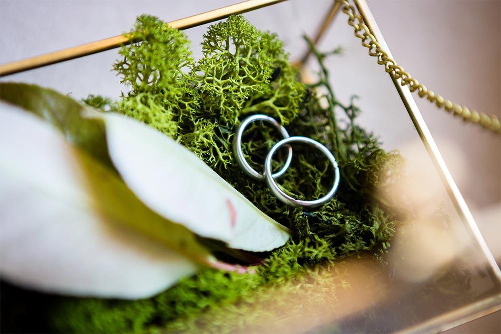 Galeria organizacion de enevtnos bodas y fiestones